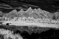 tetons_2016_6web (Jessica Haydahl Photography) Tags: grand teton national park wyoming tetons mormon row john molton barn apsens fall colors infrared photography nikon d810 d7000 pentax 645z medium formate landscape ansel adams