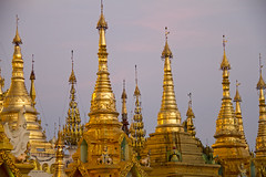Evening light on the stupas#3 (bag_lady) Tags: shwedagonpaya myanmar burma yangon rangoon buddhism buddhist singuttarahill sacred stupas golden shwedagonzedidaw goldenpagoda greatdagonpagoda