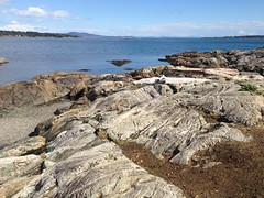 2016 09 19 Cattle Point_0013 (Blake Handley) Tags: blake blamar cattlepoint oakbay victoria bc britishcolumbia vancouverisland canada dogs ocean shoreline beardedcollie beardie