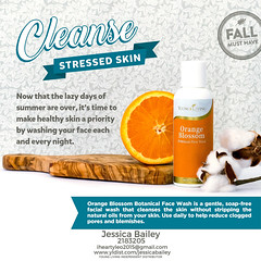 11-Cleanse (Jessica Bailey YLEO) Tags: yleo essential oils young living autumn fall recipes wellness oil oily mom body system support