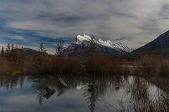 Mount Rundle No.1 (Patstirling) Tags: canon6d banff alberta canada nationalpark vermilion reflection mountain sky blue clouds trees conifers rundle brush shoreline shore rocks green landscape skyscape leefilter nd lake layers outdoor serene water tree plant river canon 6d 1635mmf4l beaverdam pool snow ice winter log wife anniversary trip travel world explore ridge ridgeline forest park fav25