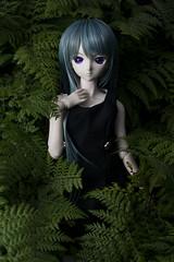 Green (haru88) Tags: dd dds volks doll dollfie dollfiedream