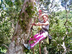 """Macucu Tree Climbing in Amazon. Manaus, Brazil. Feb 2011 #itravelanddance • <a style=""""font-size:0.8em;"""" href=""""http://www.flickr.com/photos/147943715@N05/30210785630/"""" target=""""_blank"""">View on Flickr</a>"""