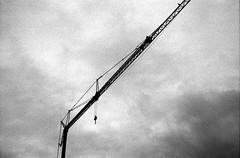 crane (Some More Sundays) Tags: blackwhite schwarzweiss analog analogue 35mm filmphotography push sureal silence ilfordhp5 rodinal minoltaxd7