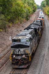 Tier 4s on the Southern Tier (sullivan1985) Tags: train railroad railway locomotive engine ge generalelectric et44ac ns3646 ns3639 bnsf7039 es44c4 h08 westbound freight freighttrain campbellhall cphall southerntier ns norfolksouthern local tier4