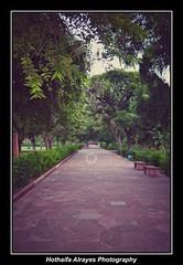 #india #uttarpradesh #uttar_pradesh #agra #tajmahal #taj_mahal #garden #tajmahalgarden #unescoworldheritagesite #shahjahan      # # #_ # #_ #mumtazmahal #_ # # (alrayes1977) Tags: india uttarpradesh agra tajmahal garden tajmahalgarden unescoworldheritagesite shahjahan      mumtazmahal