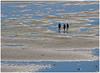Tideland (kurtwolf303) Tags: watt tideland föhr germany deutschland meer ocean people schleswigholstein olympusem1 omd microfourthirds micro43 systemcamera natur nature unlimitedphotos olympus blue blau 250v10f topf25 topf50 500v20f 750views 800views 900views 1000v40f topf100 topf150 topf75 outdoor 1500v60f 2000views
