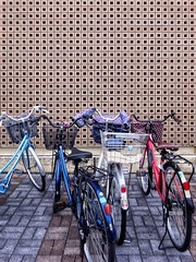 a bicycle parking lot CyclingUnites Bicycle Bike Bikes Parking Wall Fine Art Photography Art ArtWork Simplicity Simple Photography Symmetry Mode Of Transport Transportation Land Vehicle Stationary Outdoors No People Bicycle Basket Day Beautiful Street St (neijin0218) Tags: cyclingunites bicycle bike bikes parking wall fineartphotography art artwork simplicity simplephotography symmetry modeoftransport transportation landvehicle stationary outdoors nopeople bicyclebasket day beautiful street streetphotography architecture