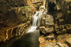 Lower falls, Sabbaday Falls, Kancamagus Highway (alohadave) Tags: autumn brook fall kancamagushighway newhampshire northamerica pentaxk5 places sabbadaybrook sabbadayfalls season unitedstates water waterfall smcpda1650mmf28edalifsdm
