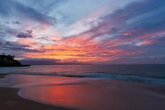 Lahaina color (Howard Ryder) Tags: maui hawaii paradise vacation 2016 nikon howardryder ryderphotographic d810 lrcc pscc nik