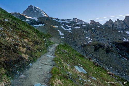160707--Alpy-Grossglockner-Kozy