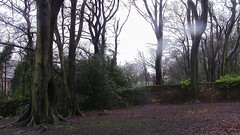 more_trees_by_greatbeanoofbritain-d9xwn4s (BeanosOnToast) Tags: forest trees housing liverpool camphill england nature outdoor