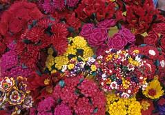 Artificial Flowers Palm Chilapa Guerrero (Teyacapan) Tags: flowers flores palma chilapa guerrero nahua mexico crafts