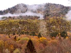 autunno - monte Sleme - Slovenia (perplesso42) Tags: autunno sleme slovenia bovec zabrajda montagna mountain autumn coth nebbia fog
