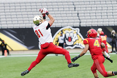 Coupe Vanier Cup 52 - Université Laval Rouge et Or vs The University of Calgary Dinos (Haddadios) Tags: usports winner université laval rouge et or vs university calgary dinos cis sic rseq football sports photography coupe vanier cup 52nd 52 tim hortons field national championship nikon d800 d3s afs nikkor 300mm f28g 70200mm ed vrii tc17e teleconverter tokina 1116mm ultra wide angle lens atx 2470mm winners champions trophy