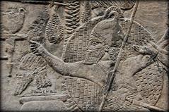 Assyrian Military Campaign in Southern Mesopotamia, Iraq. (Assyria, Babylon, Akkad, Sumer...) Tags: military iraq relief campaign nineveh mesopotamia assyria ashur wallrelief ashurbanipal assur esarhaddon sennacherib southwestpalace assyrianarmy