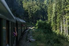 DSC08877.jpg (s_biermann) Tags: train zug historic jahr steamtrain schluchsee dampflok historisch titisee 2015 seebrugg brental igdreiseenbahn