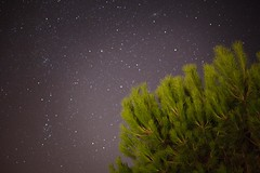 Cleste (louPasc) Tags: nature canon voigtlander ciel 40mm t extrieur nuit babar etoiles milkyway ultron 5d2