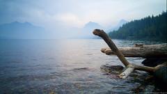 Nessie Log (drapsch) Tags: park mountain lake reflection nature fog stone clouds landscape log g4 ripple lg glacier driftwood