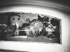 Rotura de La Paz...mundial. (josmuoz88) Tags: guerra paz paloma mundial mundo mojcar
