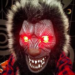Demon Wolfman (rcvernors) Tags: hairy halloween danger square dangerous eyes squareformat demon mutant redlight wolfman redeyes runforyourlife scaryeyes glowingredeyes iphoneography instagramapp uploaded:by=instagram