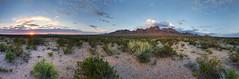 Chihuahuan Desert  Panorama (BongoInc) Tags: panorama newmexico lascruces desertlandscape desertsunset desertsouthwest chihuahuandesert landscapepanorama lumix8mmfisheye organmountainsnationalmonument lumixgm5