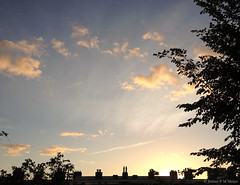 07:31 13.09.15 (jpmm) Tags: amsterdam clouds sunrise wolken cumulus contrails cirrus zuid 2015 condenssporen