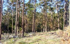 L88 Oaklands Road, Pambula NSW