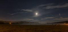 Grazing (IanMcConnachie) Tags: nightphotography mist peakdistrict fullmoon nightlandscape canon5dmkiii peakdistrictatnight