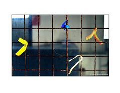 Ribbons. #rust #wiremesh  #mesh  #ribbon #tied #tieayellowribbon #Rushie. #Laurarushrivoire #dirtywindow (Rushie.) Tags: urban abandoned rust mesh ribbon tied dirtywindow wiremesh rushie tieayellowribbon laurarushrivoire