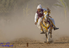 tent pegging (TARIQ HAMEED SULEMANI) Tags: travel summer tourism colors trekking canon caballo culture sensational jinete tariq supershot tentpegging concordians sulemani tariqhameedsulemani