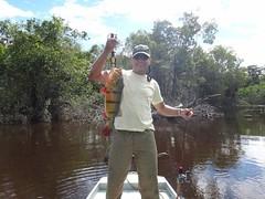 Amazonia 2012 (6)