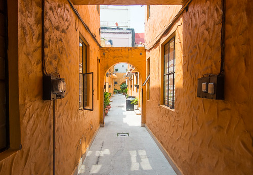 Polanco alley