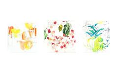 The 18 Fruits 1-3 (mayakonakamura) Tags: fruits hospital painting tokyo canvas oil kurume orie kyushu nakamura mayako semiabstract commissionedwork