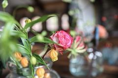flowers dinner