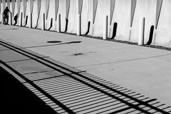 At the End (Torsten Reimer) Tags: shadows usa contrast wall abstract northamerica schatten standing boston man massachusetts schwarzweis blackandwhite pavement unitedstatesofamerica schwarzwei unitedstates us