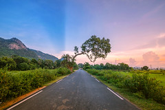 Distant Miles (kountikmitra) Tags: landscape beautifulbengal beautifulday dusk sunset nature colours road evening outdoor
