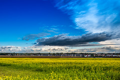 Dramatic clouds on a sunny day in Holten. (Bart Ros) Tags: ifttt 500px dramatic clouds sky blue trees beautiful travel beauty city urban holten overijssel holland dutch nederland green grass grassland flowers yellow cloudscape cloudy housing houses pentax buildings building roofs nature natural