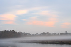 Watercolour Morning (Ida H) Tags: landscape morning dawn beforedawn blue bluehour bluesky pinkclouds pink mist fog water pond lake trees silhouettes painterly watercolour nikon d90 calm peaceful outdoors