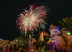 Fireworks Friday (Allen Castillo) Tags: waltdisneyworld magickingdom fireworksfriday fireworks wishes wdw disney newfantasyland littlemermaid ariel nikond610 nikon1424 nightphotogrphy longexposure