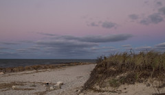 Color Inversion (brucetopher) Tags: sky blue earthandsky cloud clouds pink beach seagrass sand rocks coast coastal coastline seacoast wind evening twilight water ocean sea atlantic bay oyster harvest low strand hightide tide waves horizon