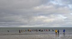 Oyster Sunday (brucetopher) Tags: water clouds people men women cold cool breezy windy cloudy light sea ocean saltwate beach wade look hunt shellfishing weather coast coastline stand harvest aquaculture wet green blue lowtide low