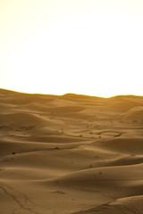 IMG_6093 (Israel Filipe) Tags: marrocos