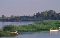 egypte_029 : le Nil, Egypte (pascalvu1) Tags: egypt eau nikonf film kodachrome