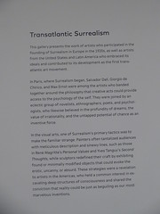 About transatlantic surrealism (c_nilsen) Tags: sanfrancisco california digital digitalphoto sanfranciscomuseumofmodernart museum art