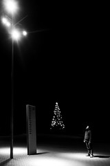 Like Light To A Fly XI - Christmas Edition (Isengardt) Tags: light licht lampe lamp laterne strasenlaterne saal hlderlinsaal christmas edition weihnachten christmastree weihnachtsbaum series serie fly fliege floskel redewendung ausgabe negativespace negativerraum black schwarz weiss white bw sw monochrome monochrom fellbach badenwrttemberg deutschland germany europe europa olympus omd em11250mm langzeitbelichtung longtimeexposure schwabenlandhalle
