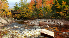 Autumn Colors On The Mary Ann River (TheNovaScotian1991) Tags: water autumn fallcolors autumncolors fallfoliage samsunggalaxys6edge novascotia canada capebretonhighlands nationalpark capebretonisland redtint flowing smartphone redmaple rocks boulders bridge maryannriver