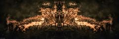 Study of flames (Daniel Arnaldi) Tags: bonfire conceptual food fire freshfruit hot night orange burning fantasy fireworks flame flames ghostly heat printing smoke temperature wood danielarnaldiphotographer
