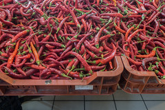 20160916 Budapest, Hungary 03196 (R H Kamen) Tags: budapest easterneurope hungary abundance chilli food foodmarket largegroupofobjects largegroupofobects markethall marketstall paprika peppervegetable peppers retail rhkamen