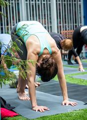 BC Lung Yoga-46 (bdshaler) Tags: bclungassociation bclung takeabreather yoga lululemon